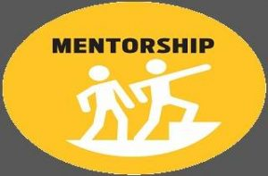 Mentorship Program Dr Seemab Shaikh  IASSA TRAINING PROGRAM.