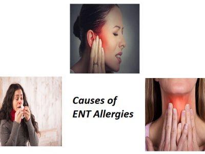 Allergy Specialist in Pune | Otolaryngic Allergies | Dr. Seemab Shaikh